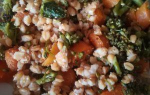 Farro alle verdure colorate, in crema di legumi
